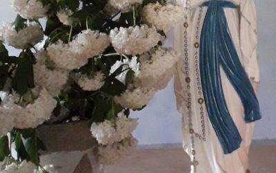 Lundi 1er juin : Bienheureuse vierge Marie, Mère de l'Eglise priez pour nos défunts !
